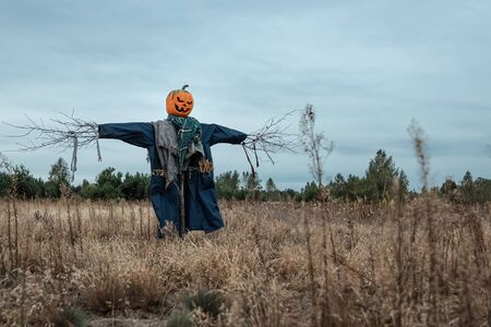 A scary scarecrow with a halloween pumpkin head in a field in cloudy weather. Halloween background, copy space