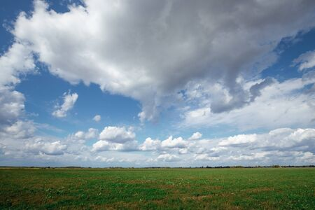 blue sky with floating clouds, green field.