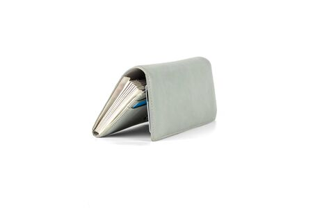 Gray female wallet isolated on a white background. Concept salary, budget, savings.