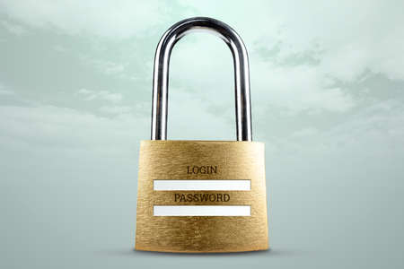 Padlock and password and login fields. Concept for protection of personal information, data encryption, online protection. 3D illustration, 3D render Standard-Bild