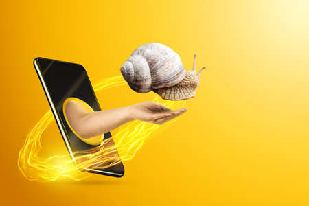 A hand getting out of the smartphone screen holds a snail, yellow background. Concept of slow mobile internet, new technologies, 5G. Copy space 版權商用圖片
