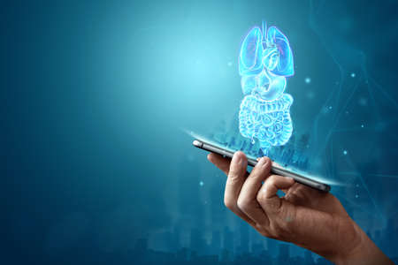 Holographic projection of scanning the internal organs of a person, x-ray in the phone. The concept of modern medicine, digital x-ray, new technologies, human anatomy