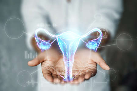 Doctor and hologram of the female organ of the uterus. Medical examination, women's consultation, ultrasound, gynecology, obstetrics, pregnancy, modern medicine
