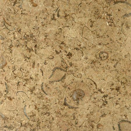 Granite Texture Beige Almond Variety Stock Photo