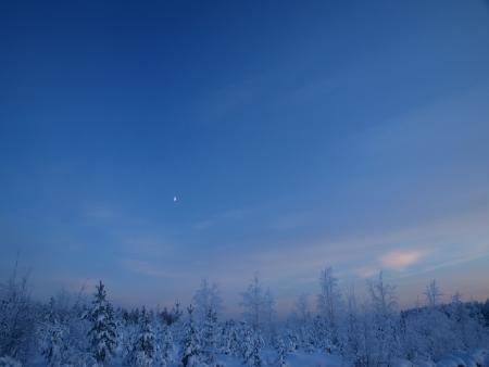 blue day photo