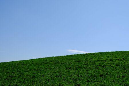 Minimalist countryside landscape in Tuscany, Italy.