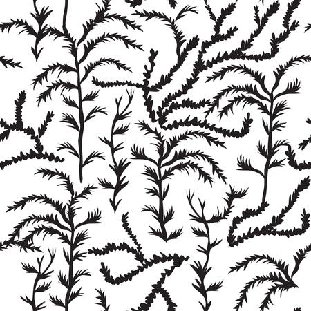 sea weed: sea weed pattern, algae seamless texture, endless pattern with leaf Illustration