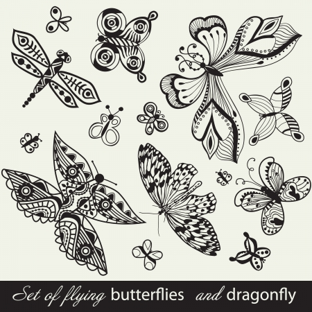 accents: Butterfly Background, vintage insect set, collection of butterflies and dragonfly, set of butterflies silhouettes isolated on white background