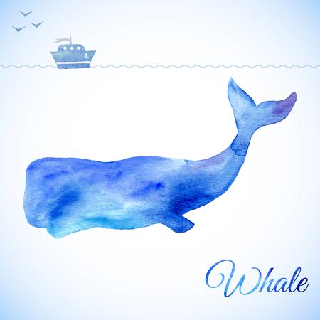 ballena: Ejemplo de la ballena azul. ballena de la acuarela. Ilustración del vector de la ballena de la acuarela