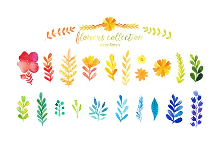 Set of colorful watercolor leaves. Vector illustration.vector set of red autumn watercolor leaves and berries, hand drawn design elements.