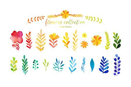 화려한 수채화 잎의 집합입니다. 벡터 illustration.vector 빨간색 가을 수채화 잎과 열매, 손으로 그린 디자인 요소의 집합입니다.