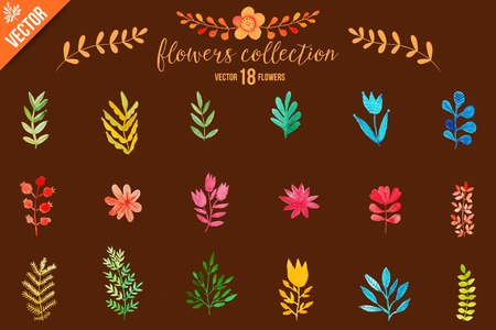tree fruit: Colorful flowers set. Leaves. Vector illustration.vector set of red autumn watercolor leaves and berries, hand drawn design elements.