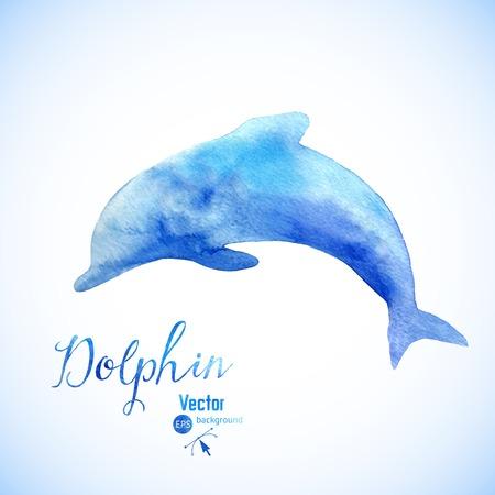 dauphin: Aquarelle dauphin fond SYMBEL. Sauter dauphin bleu aquarelle peinte. Illustration
