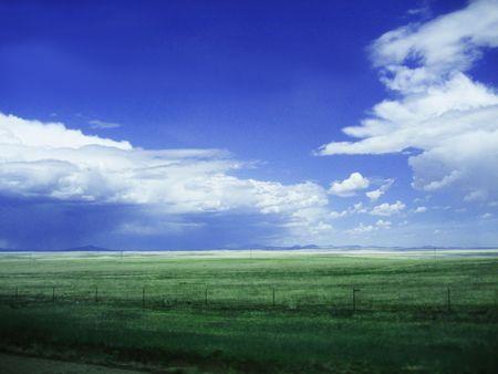 Antecedentes del cielo y Grass