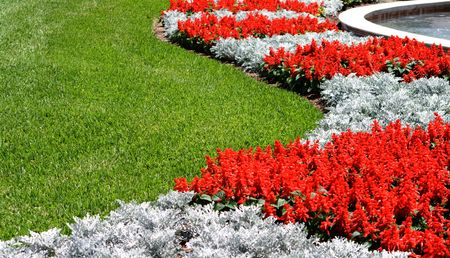 contrasting: Red Snapdragon Flowers and Grass is a beautiful landscaped lawn next to a fountain. There are beautiful red and silver contrasting colors in the curvy composition.