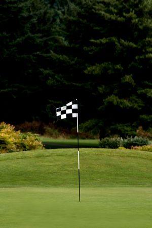 Campo de golf Verde con Negro y Blanco Bandera marcada Golf v1 capturados durinig primeras horas de la noche.