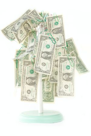 Isolated Money Growing on Tree. US One Dollar bills are hanging from its branches. Stock Photo - 5471666