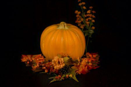 Fall Harvest Halloween Pumpkin Isoalted on a black background.
