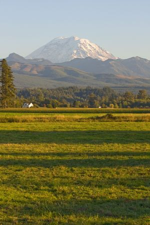 snow capped mountain: Mt Rainier Farmhouse Corn Field and Forested Background near Enumclaw Washington State.