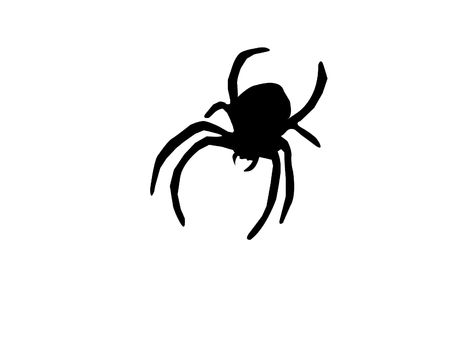 Silhouette of Spider Isolated on a White Background Stock Photo
