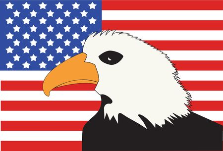 American Flag with Bald Eagle Patriotic Symbol Background.  photo