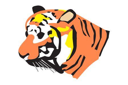 Orange and Black Tiger Illustration on a white background.  illustration
