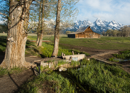 19th Centruy Barn, Grand Teton