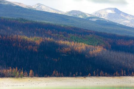 colors banff national park aberta canada british columbia 版權商用圖片