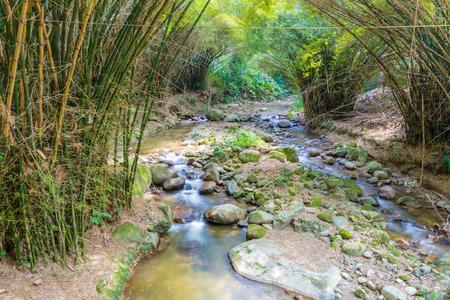 river in the jungle Colombia Stock Photo