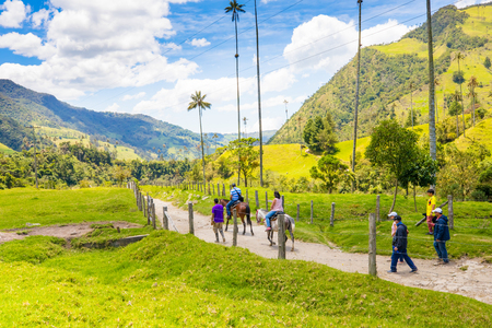 Salento March 2018 This is Cocora Valley, in Salento Colombia. Whit the the biggest palms in the world it is an amazing valley where ride horse.