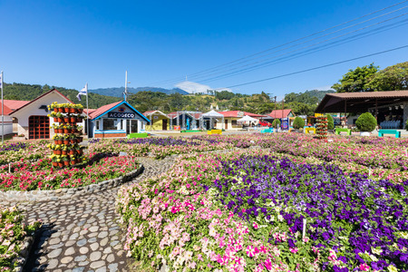 Boquete Panama January 18 2019 these flower beds can be admired during the period of flowers and coffee fair every year in January