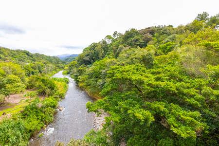 Costa Rica creek in the tropical jungle in a sunny day Foto de archivo