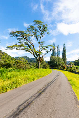 Panama Boquete road in the valley panoramic view