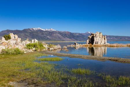 Subsurface waters enter the bottom of Mono Lake through small springs.  It took many decades to form the well-recognized tufa towers. When lake levels fell, the tufa towers came to rise above the wate