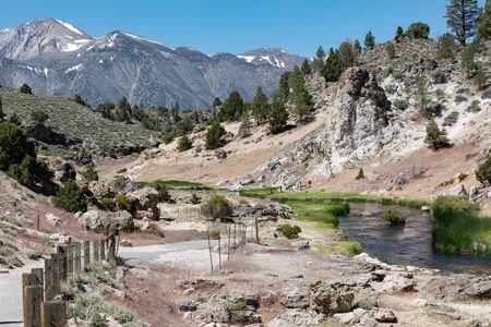 Hot Creek has dozens of natural hot springs bubbling up within