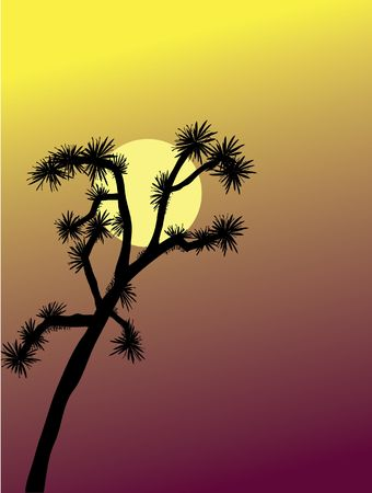 Joshua Tree at Sunset Stock Photo - 271653