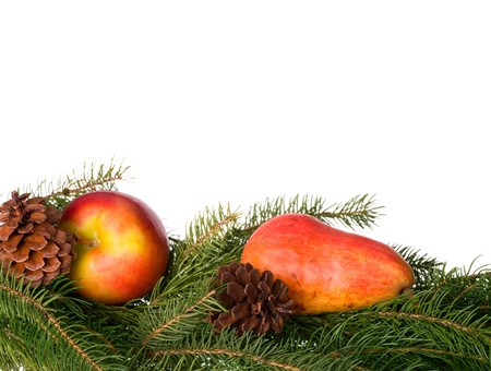 nestled: Apple and Pear nestled in Greenery and Pine Cones Stock Photo
