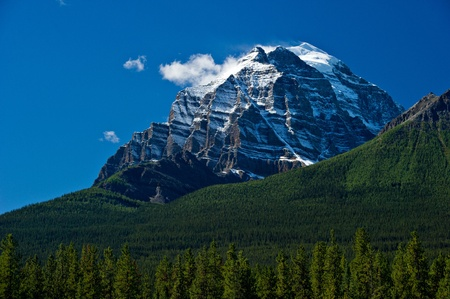 A snow covered mountain top pierces the blue sky in Banff National Park.  There are a few clouds in the sky and a vibrant green tree landscape in the foreground. photo