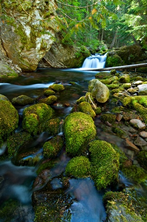 Small waterfall flows into the river in a forest in the Oregon.