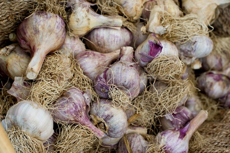 Papery white and purple bulbs of organic garlic heaped in a basket for sale at a local market.