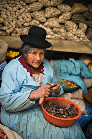 Puno, Peru - August 23, 2008: Quechua woman peels potatoes at a market in Puno. Puno is a popular destination for tourism due to the fact that it