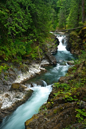 Little Qualicum Falls flows into the river in a forest on Vancouver Island, Britsh Columbia, Canada.