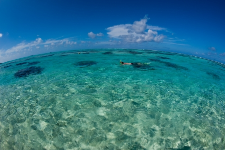 polynesia: Man snorkeling in the crystal clear ocean, Bora Bora, Tahiti, French Polynesia. Stock Photo