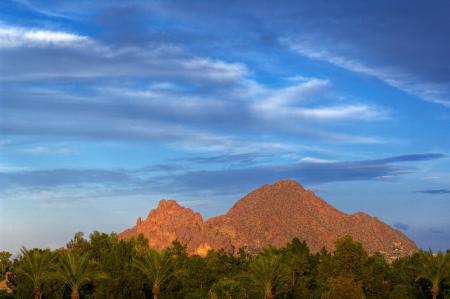 깊고 푸른 하늘 카멜 백 산에서 선명한 녹색 나무에서 찾고있다. 피닉스, 애리조나, 미국. 스톡 콘텐츠