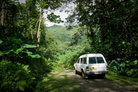 polynesia: RAIATEA, TAHITI - SEPTEMBER 15: A vehicle on a dirt road winds through the lush tropical green rain forest towards a mountain in Raiatea, Tahiti on September 15, 2009.