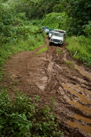 polynesia: TAHAA, TAHITI - SEPTEMBER 16: Several vehicles on a muddy dirt road winding through the lush tropical green rain forest in Tahaa, Tahiti on September 16, 2009.  Jungle tours are a popular tourist activity in Tahiti.