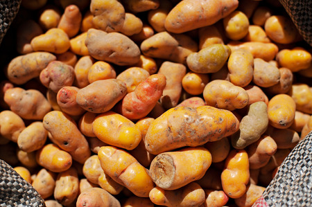 urubamba valley: Looking down on a sacks of potatoes in a Peru marketplace in the Urubamba Valley.