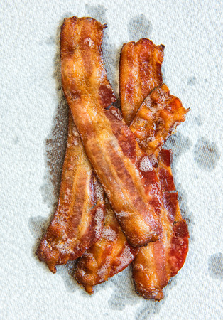 absorbed: Strips of cooked bacon piled up on a white paper towel.  You can see all of the grease being absorbed by the paper towel.