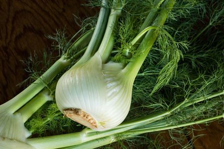 Looking at 2 fresh organic bulbs of fennel shot on a wood table. Stock Photo