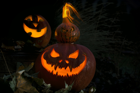 Three scary Halloween Jack O Lantern pumpkin says Trick or Treat
